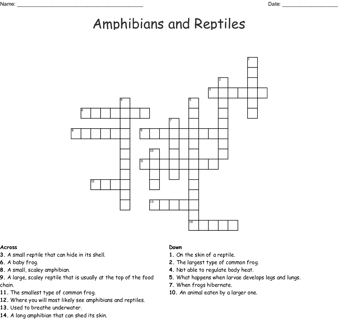 Amphibians and Reptiles Crossword - WordMint