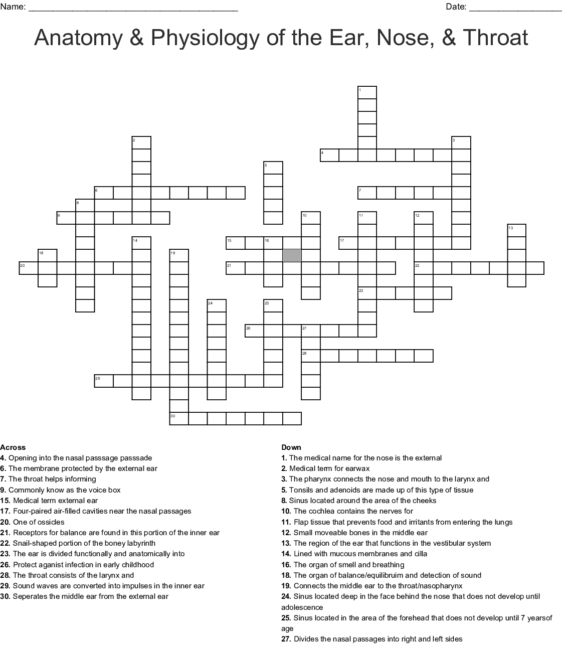 Anatomy Physiology Of The Ear Nose Throat Crossword Wordmint
