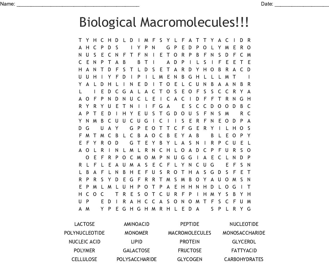 Biomolecules Crossword - WordMint