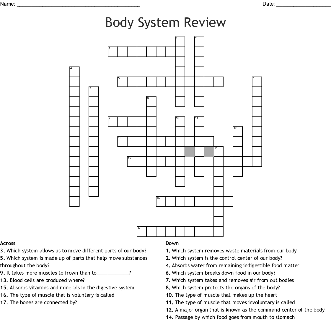 Human Body Systems Crossword Puzzle - WordMint