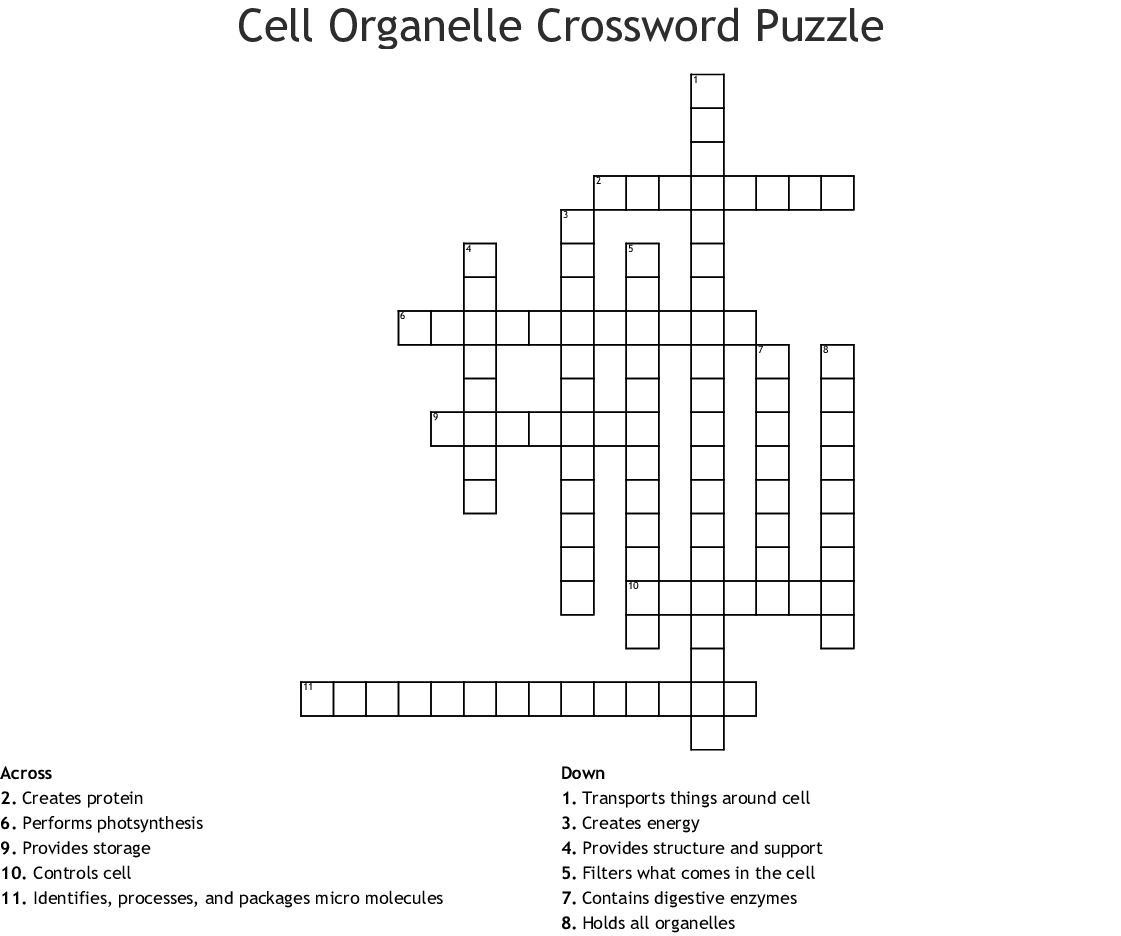 Cell Organelle Crossword Puzzle - WordMint