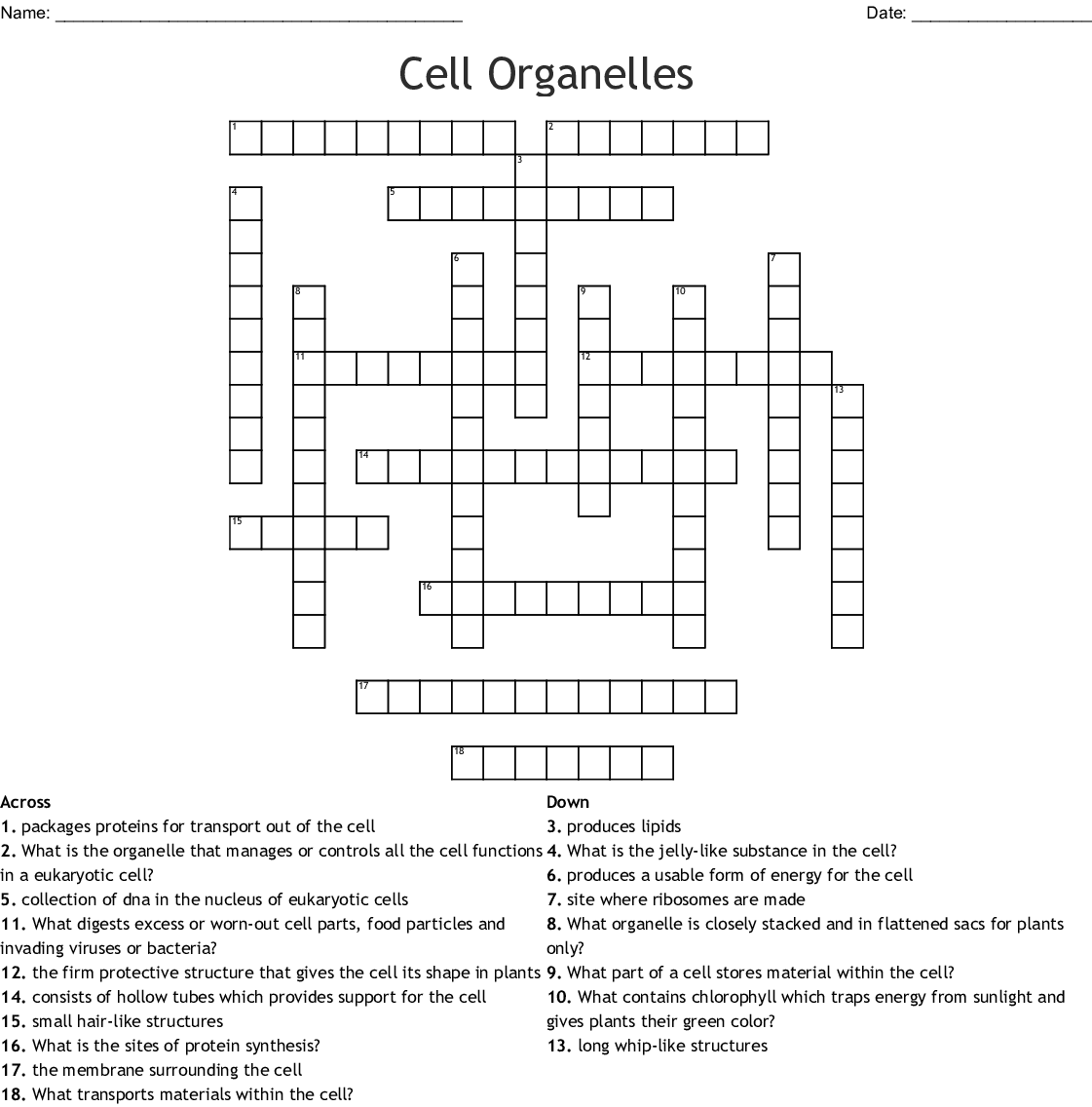 Cell Organelles Crossword - WordMint