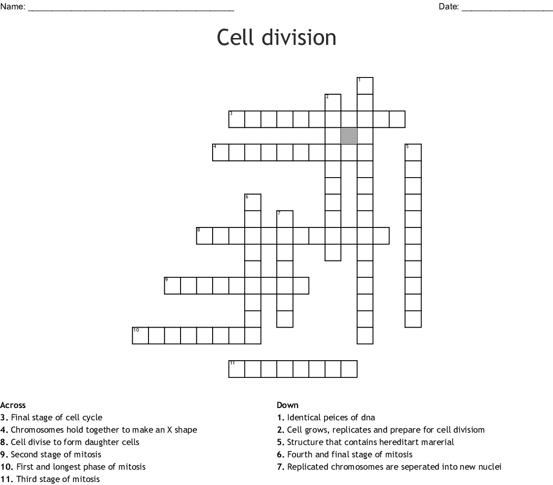 Mitosis - Word Search - WordMint