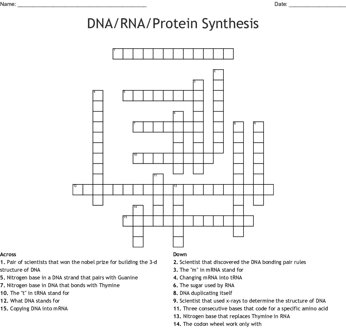 驚くばかり Dna Rna Protein Synthesis - 矢じり