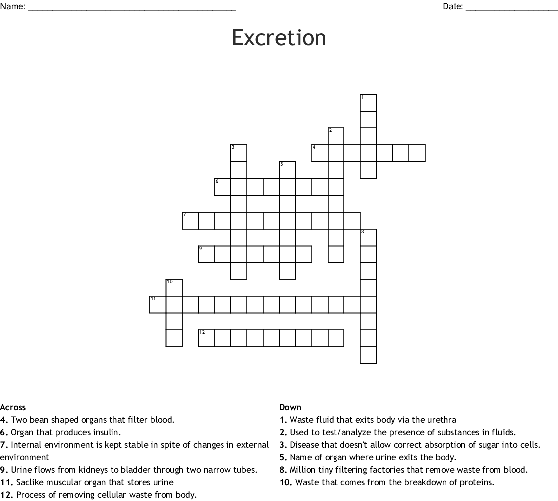 Excretion Crossword Wordmint