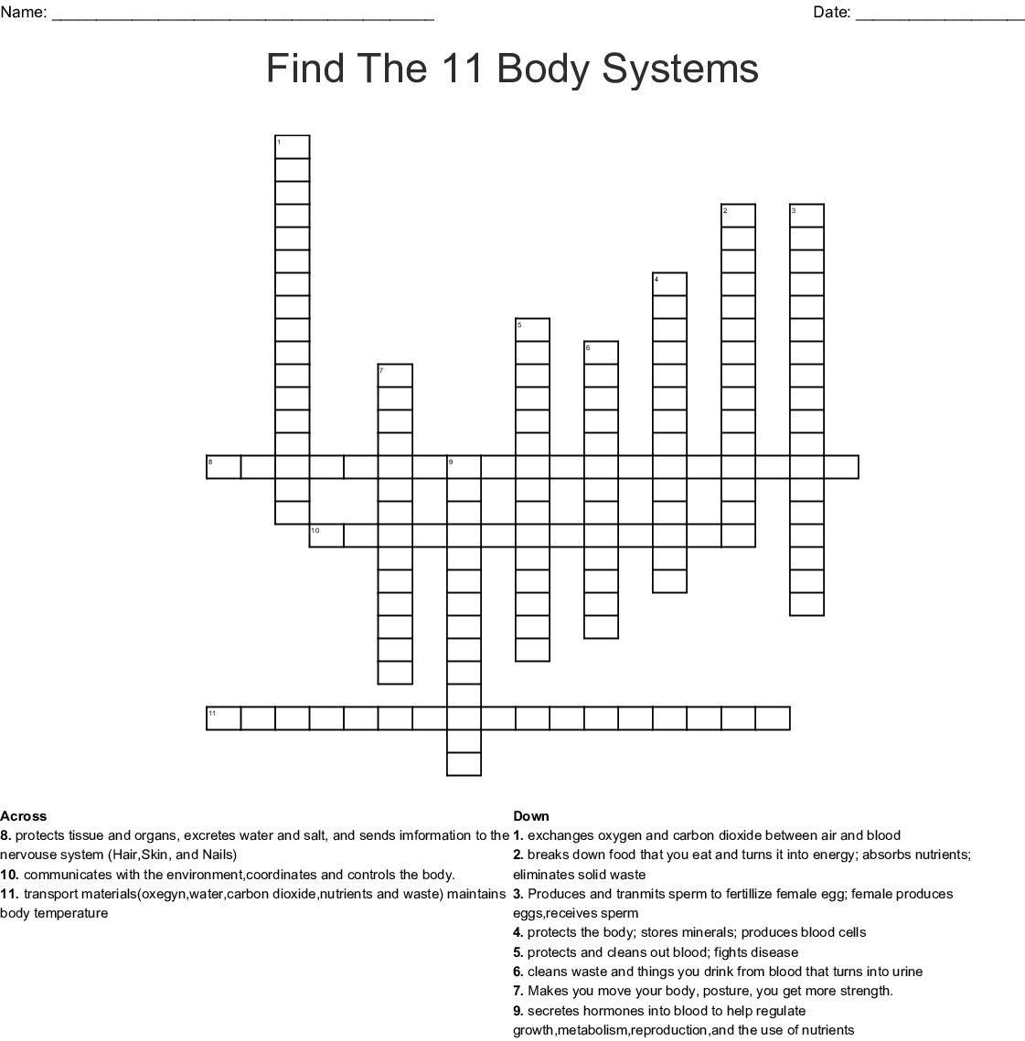 Human Body Organ Systems Crossword - WordMint