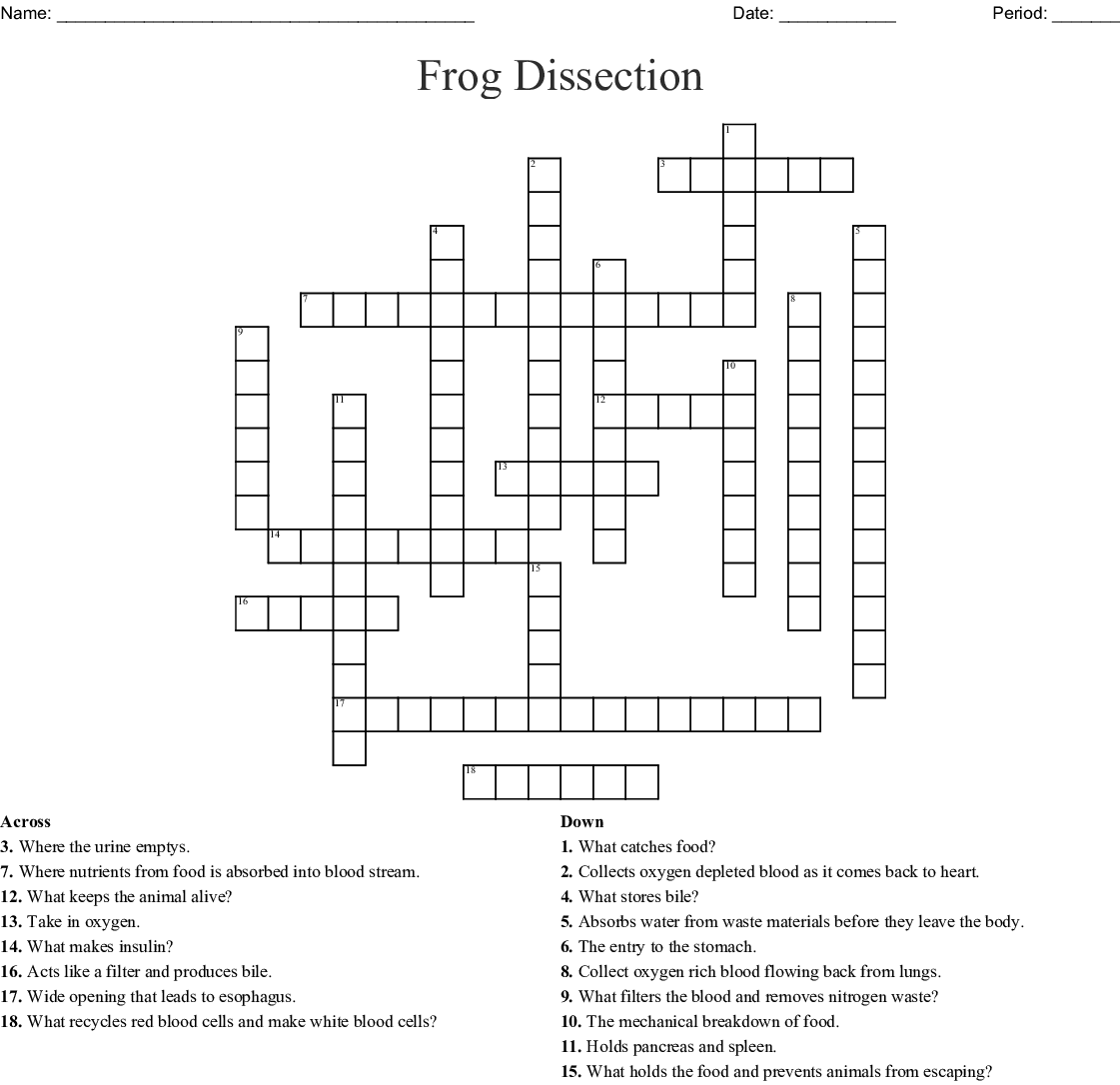 Frog Dissection   BIOLOGY JUNCTION likewise Frog Dissection Coloring Answer Key   mountainstyle co likewise Frog dissection worksheet 2 further Frog Label Frog Dissection Worksheet – bossmumma club besides  further Frog Dissection Pre lab   FBISD C uses Pages 1   6   Text Version further Frog Dissection Lab Answer Key  Frog Dissection Worksheet Answer Key further  furthermore Frog Insides Diagram Beautiful Fetal Pig Labeled Diagram Best Frog further Frog Dissection Pre Lab Worksheet Answer Key Elegant Sheep in also Frog Dissection Crossword   WordMint in addition Frog Dissection Worksheet Answer Key Anatomy the Consution likewise Frog Review Labeling Key together with Frog Dissection – Student Guide further  also Frog Dissection Coloring Answers   mountainstyle co. on frog dissection worksheet answer key