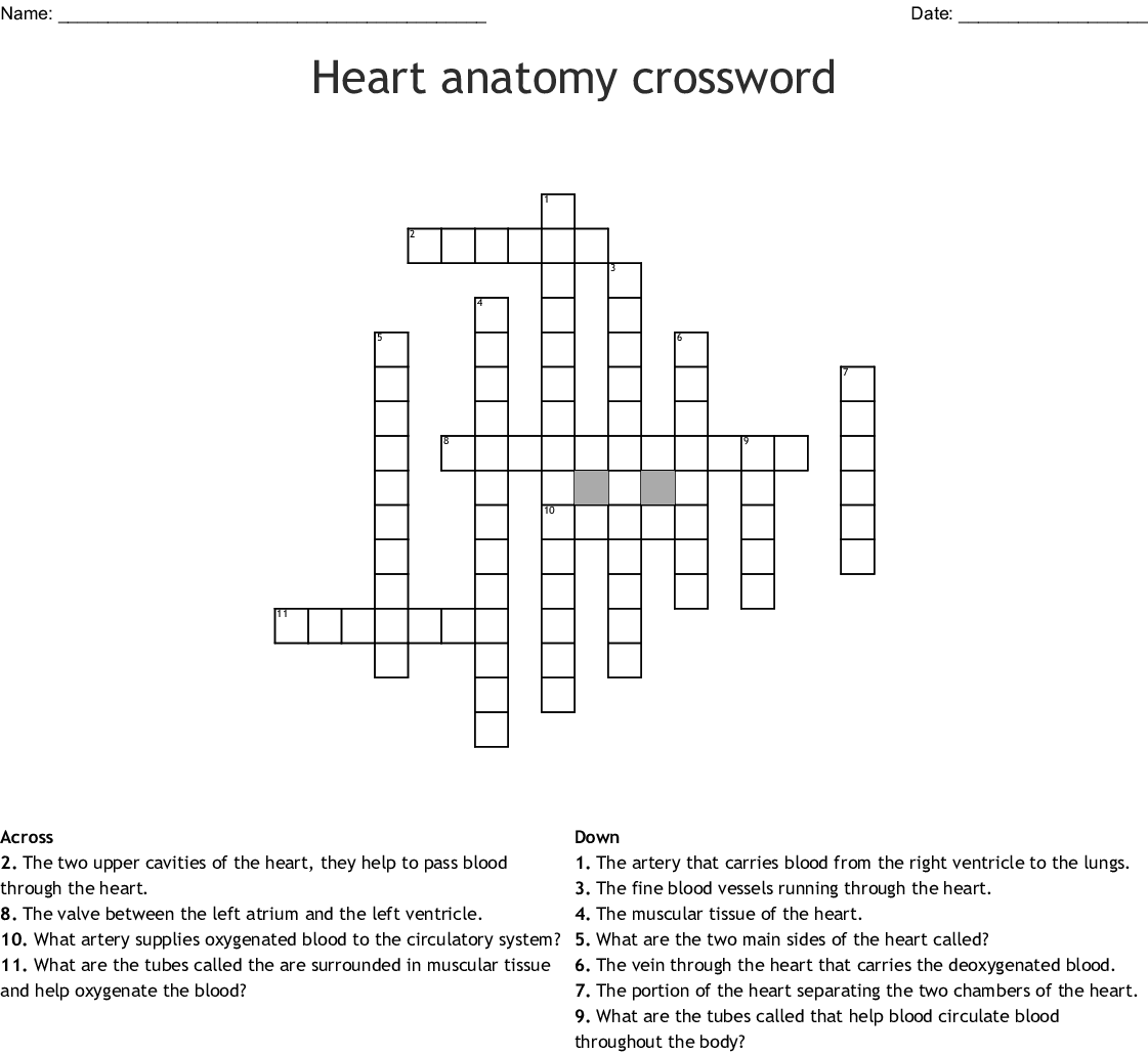 Anatomy Crossword Puzzles Printable Topsimages