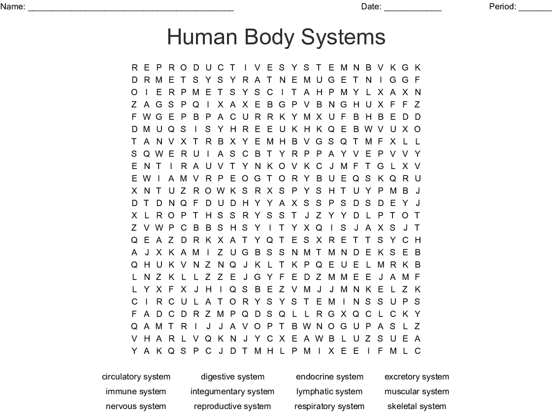 Human Body Systems Word Search - WordMint