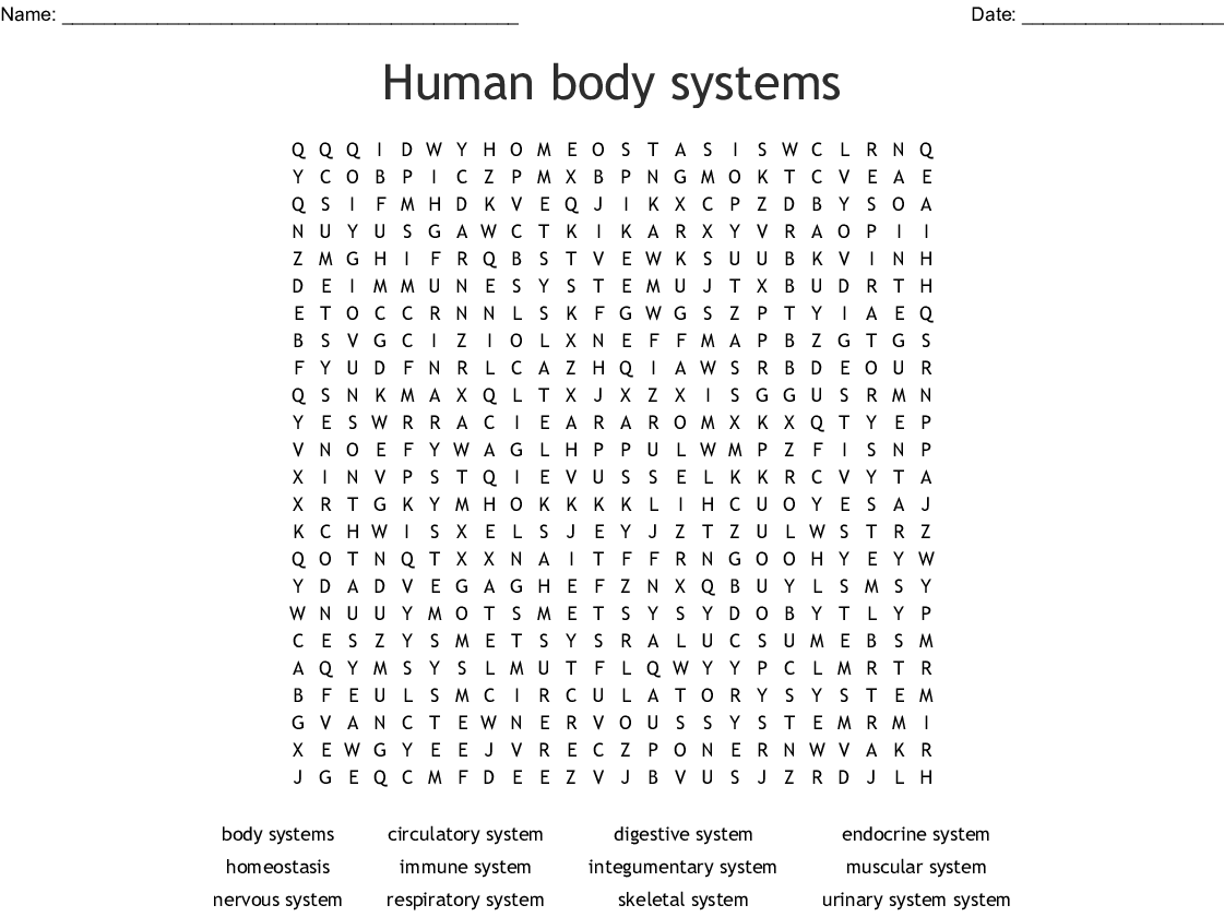 Preview of word search