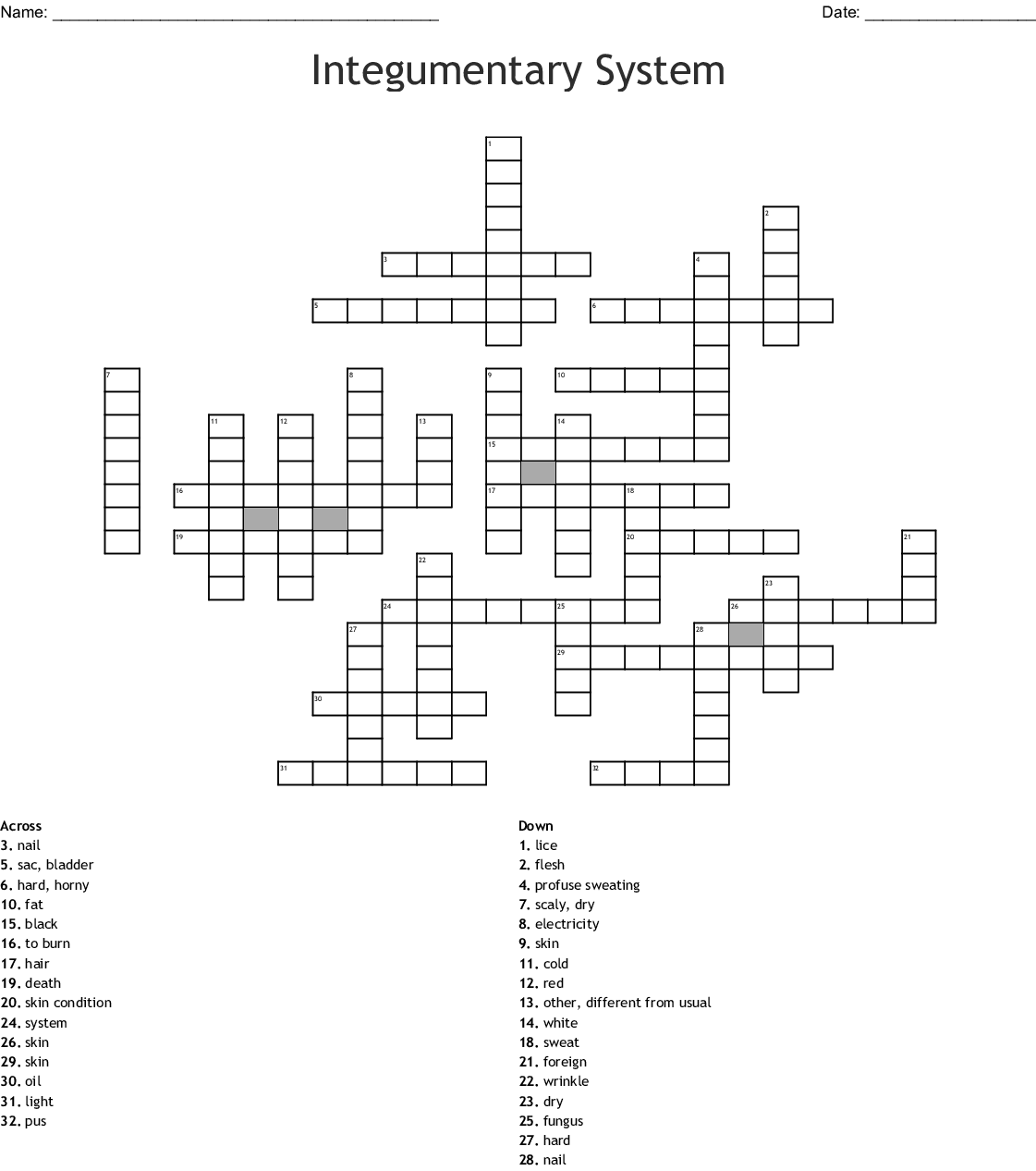 Integumentary Terminology Crossword - WordMint