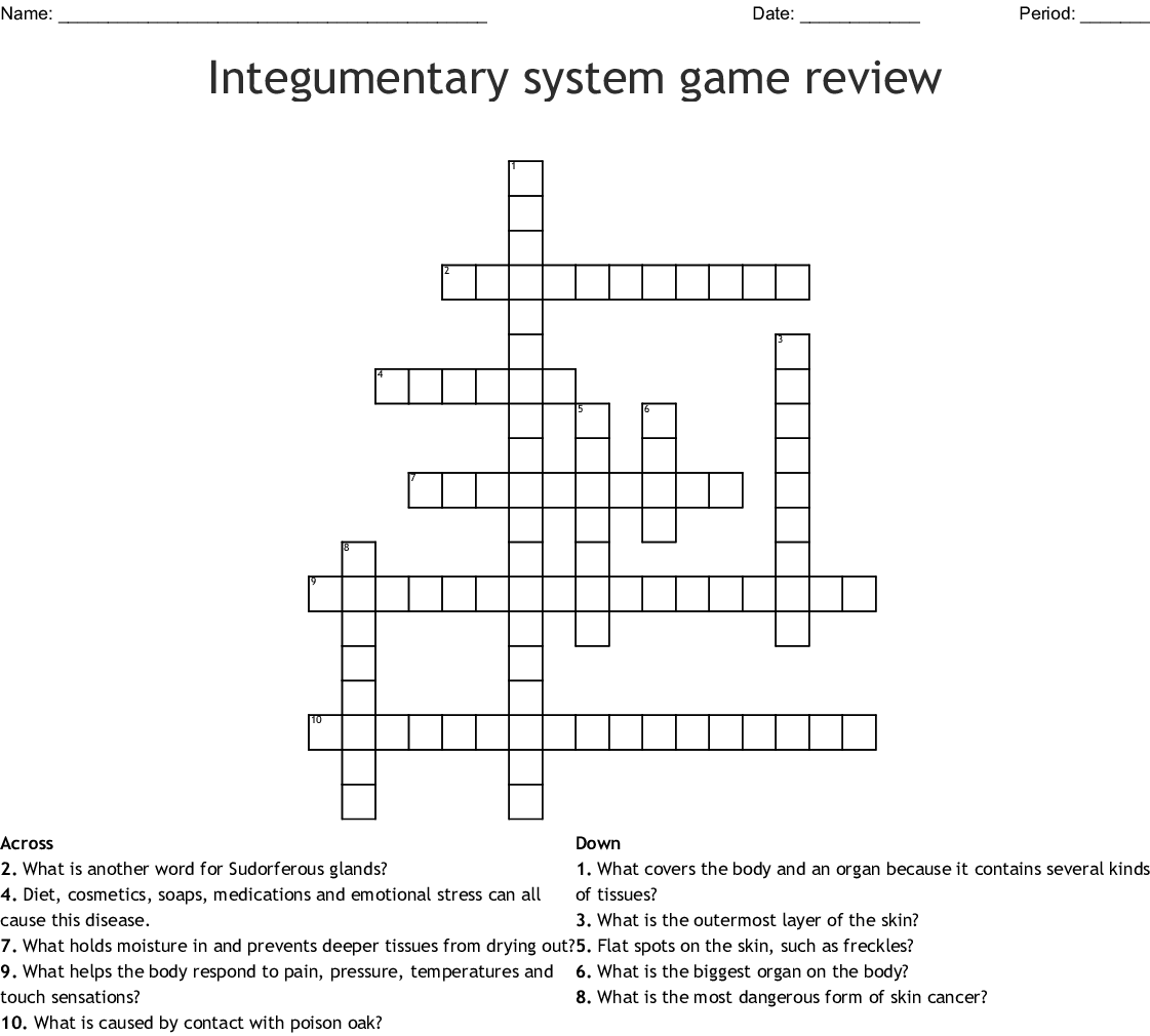 Integumentary system game review Crossword - WordMint