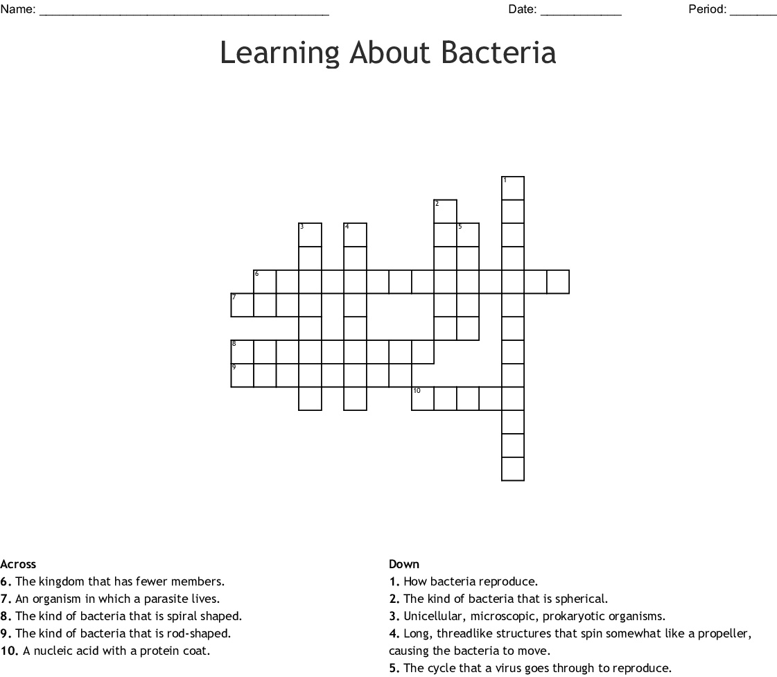 Learning About Bacteria Crossword Wordmint