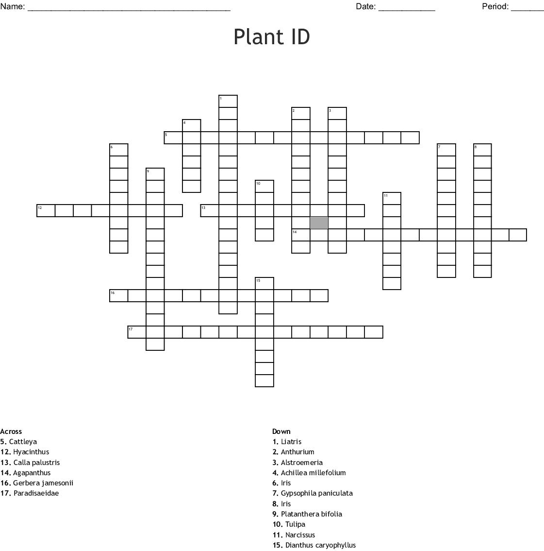 Plant Id Crossword Wordmint