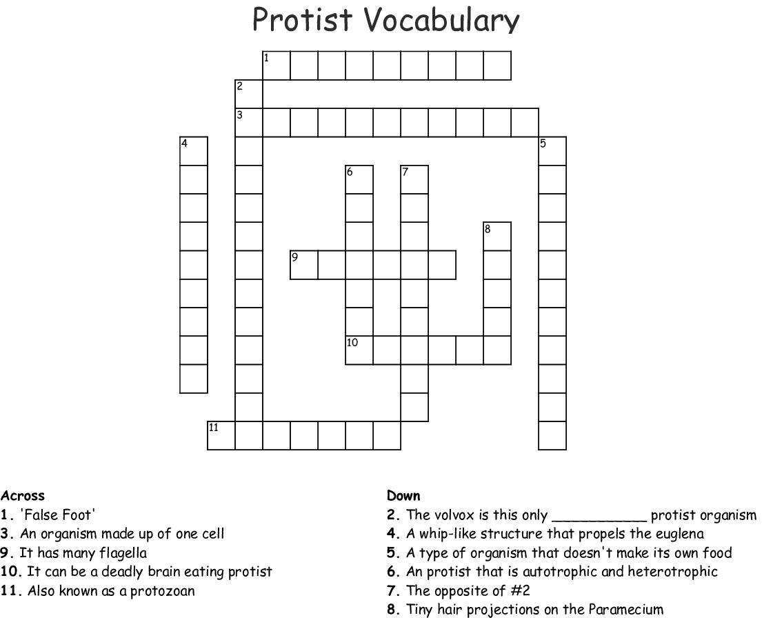 Protist Vocabulary Crossword - WordMint