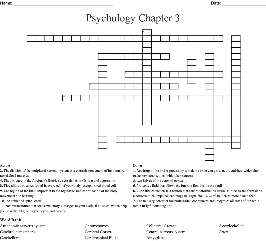 Psychology Chapter 3 Crossword   WordMint