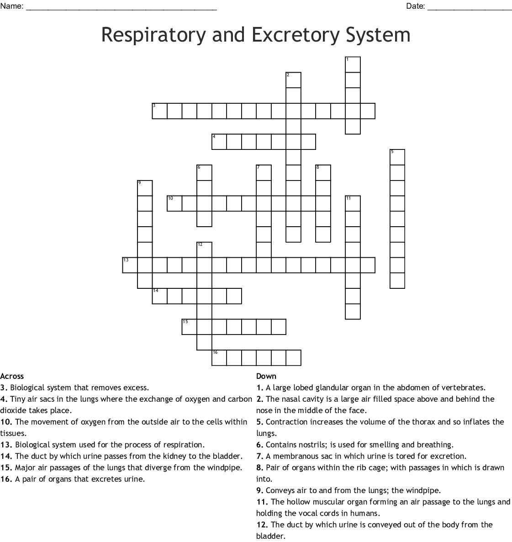 Medical Terms Crossword - WordMint
