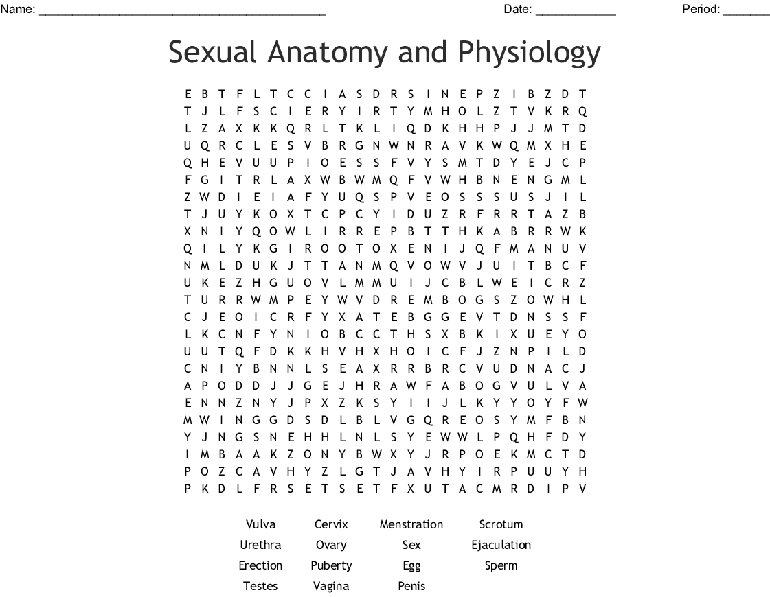 Sexual Anatomy And Physiology Word Search Wordmint