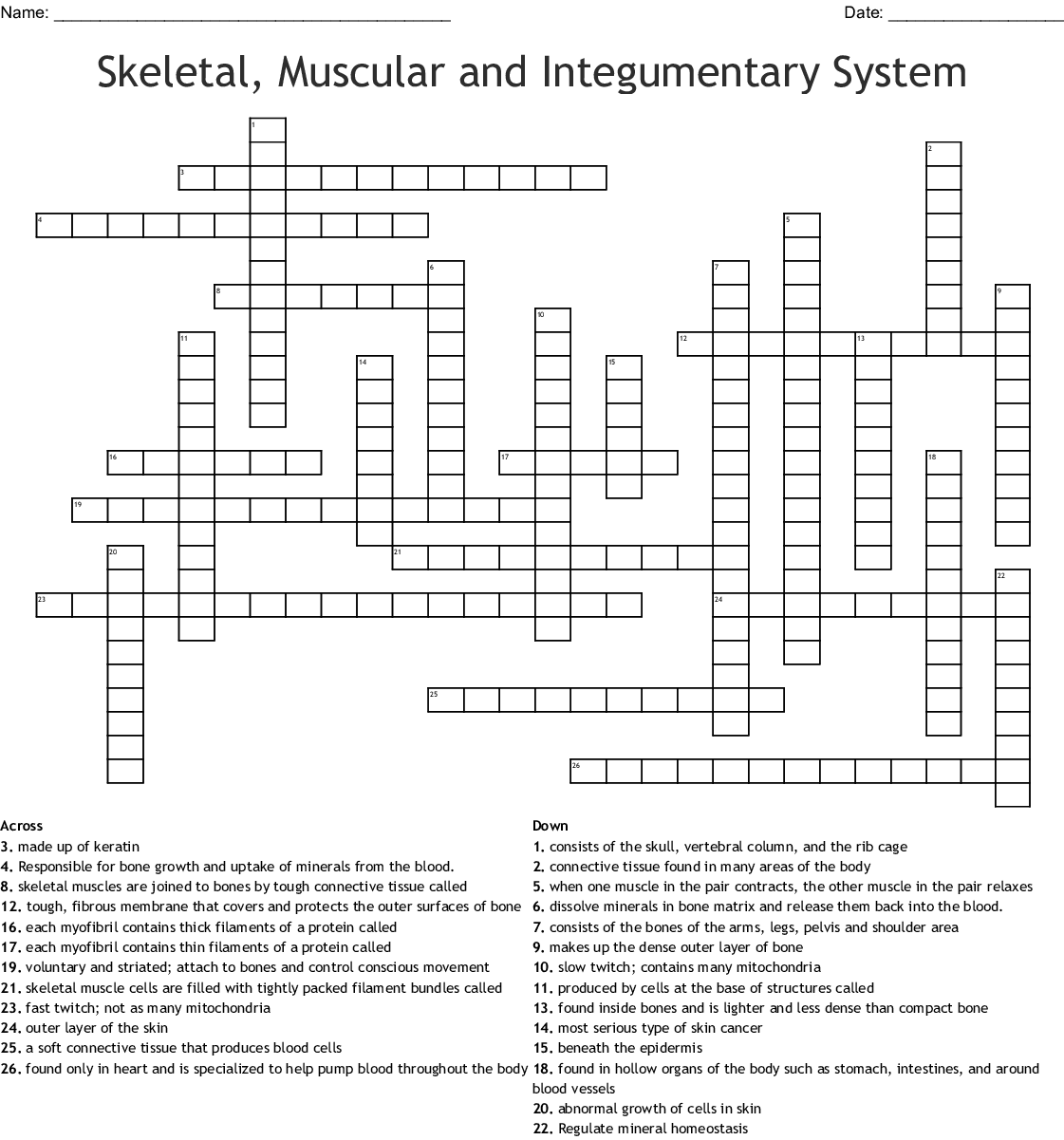 Skeletal, Muscular and Integumentary System Crossword ...