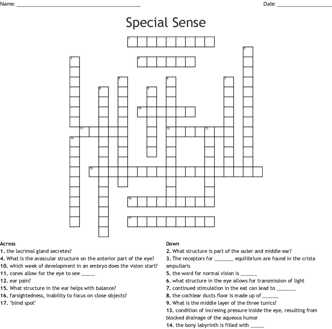 Chapter 10 Special Senses Worksheet Answers - Worksheet List