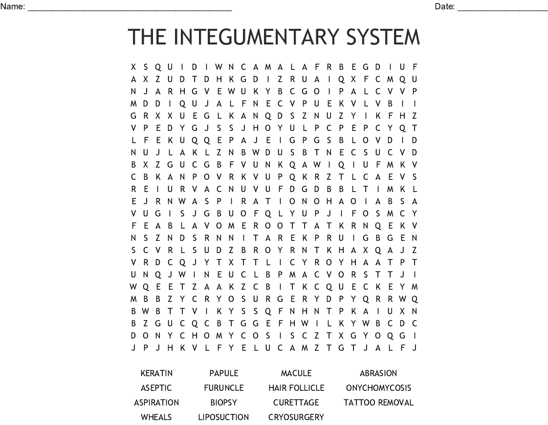 THE INTEGUMENTARY SYSTEM Word Search - WordMint