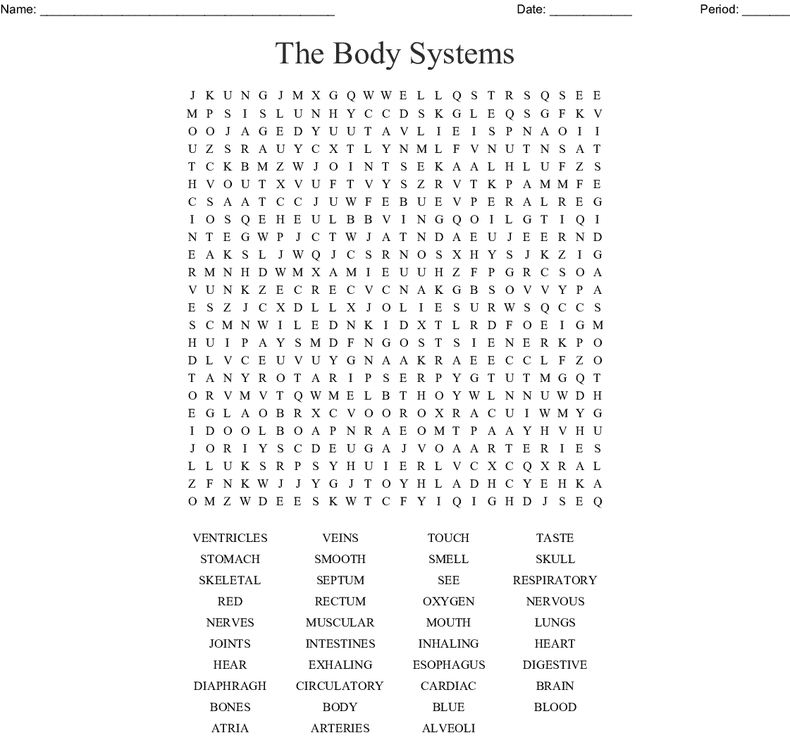 The Body Systems Word Search Wordmint