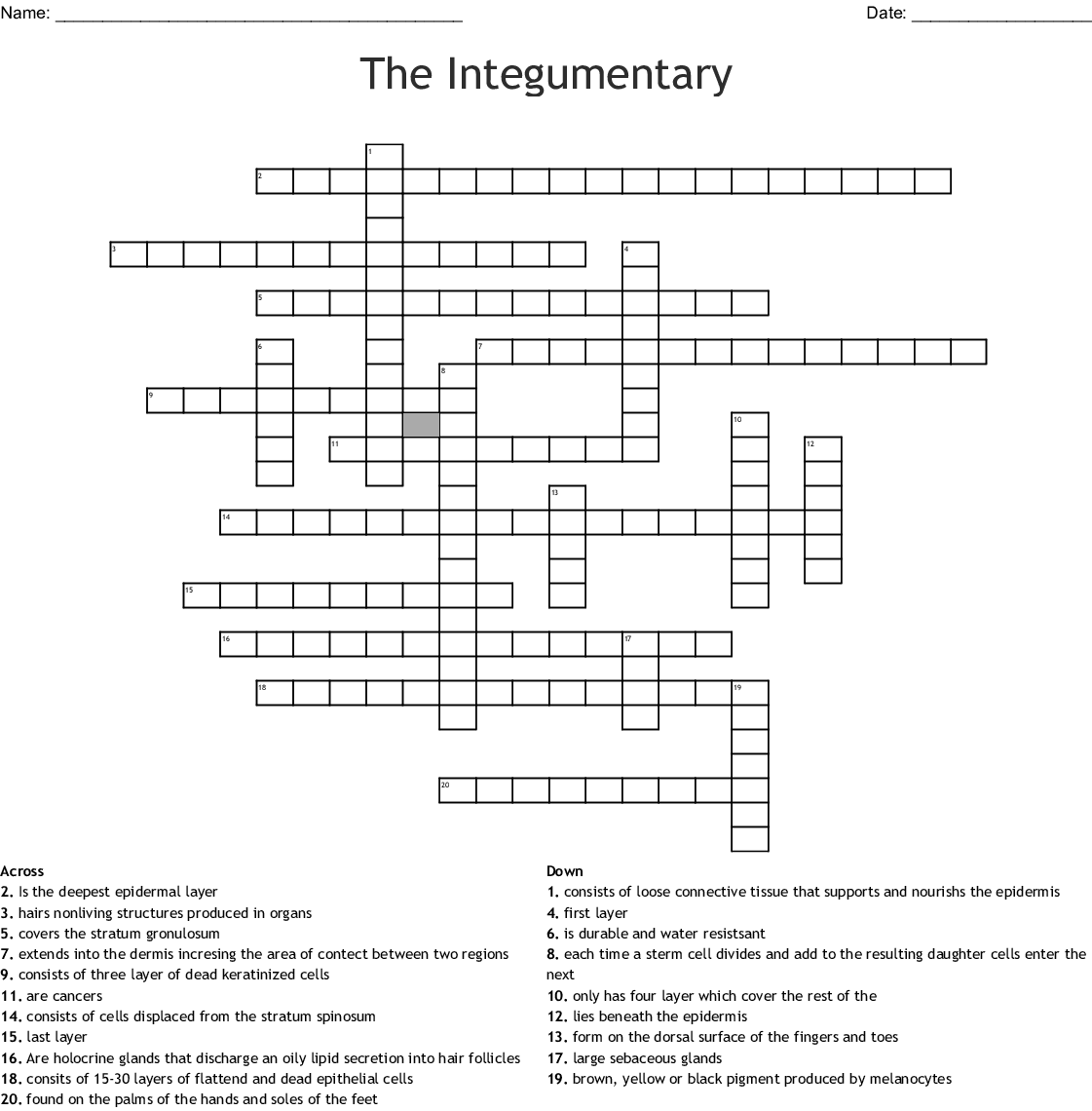 Bestseller: Chapter 5 Integumentary System Crossword ...