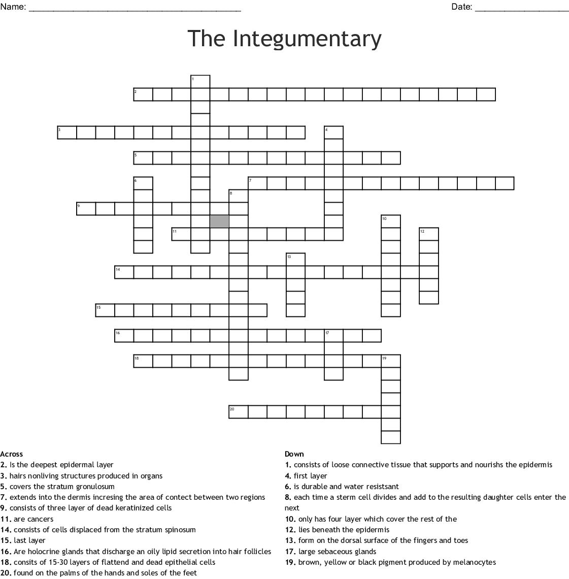 Bestseller: Chapter 5 Integumentary System Crossword ...