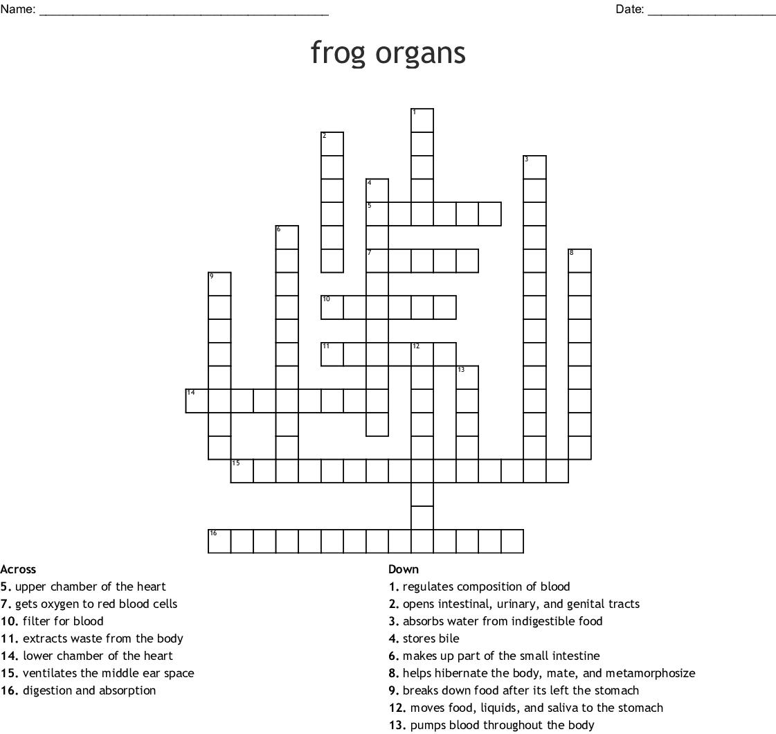 Frog Dissection Crossword - WordMint